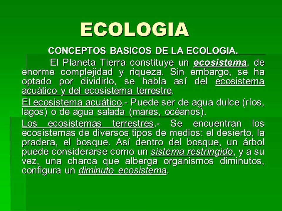 CONCEPTOS BASICOS DE LA ECOLOGIA.