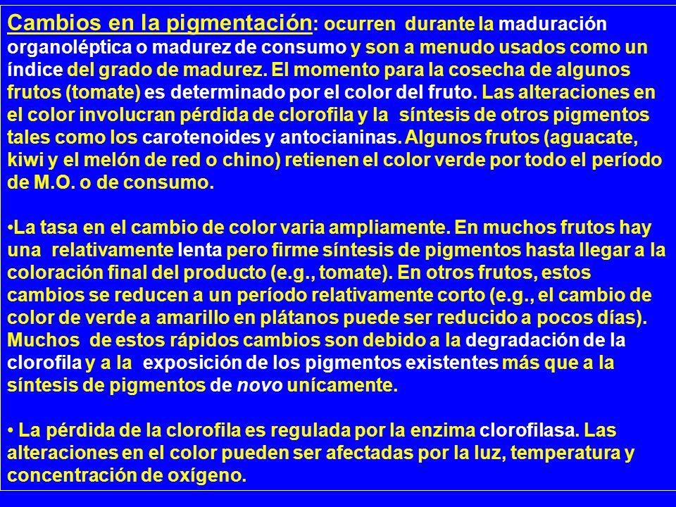 Cambios en la pigmentación: ocurren durante la maduración organoléptica o madurez de consumo y son a menudo usados como un índice del grado de madurez. El momento para la cosecha de algunos frutos (tomate) es determinado por el color del fruto. Las alteraciones en el color involucran pérdida de clorofila y la síntesis de otros pigmentos tales como los carotenoides y antocianinas. Algunos frutos (aguacate, kiwi y el melón de red o chino) retienen el color verde por todo el período de M.O. o de consumo.