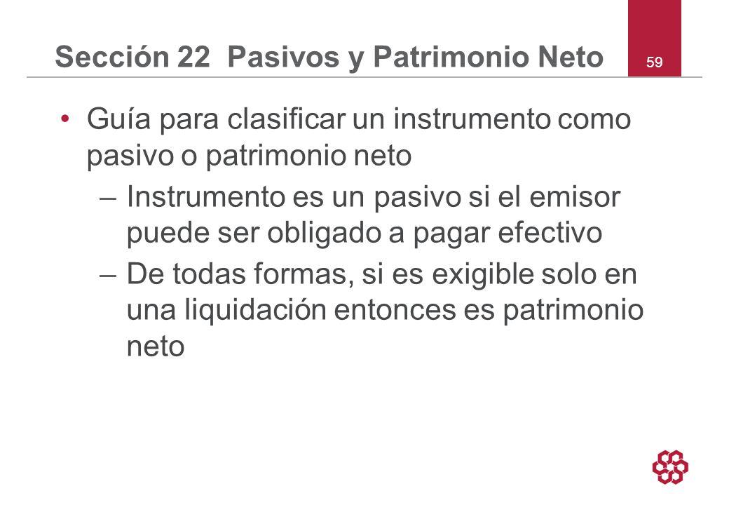 Sección 22 Pasivos y Patrimonio Neto