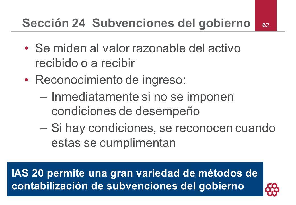 Sección 24 Subvenciones del gobierno
