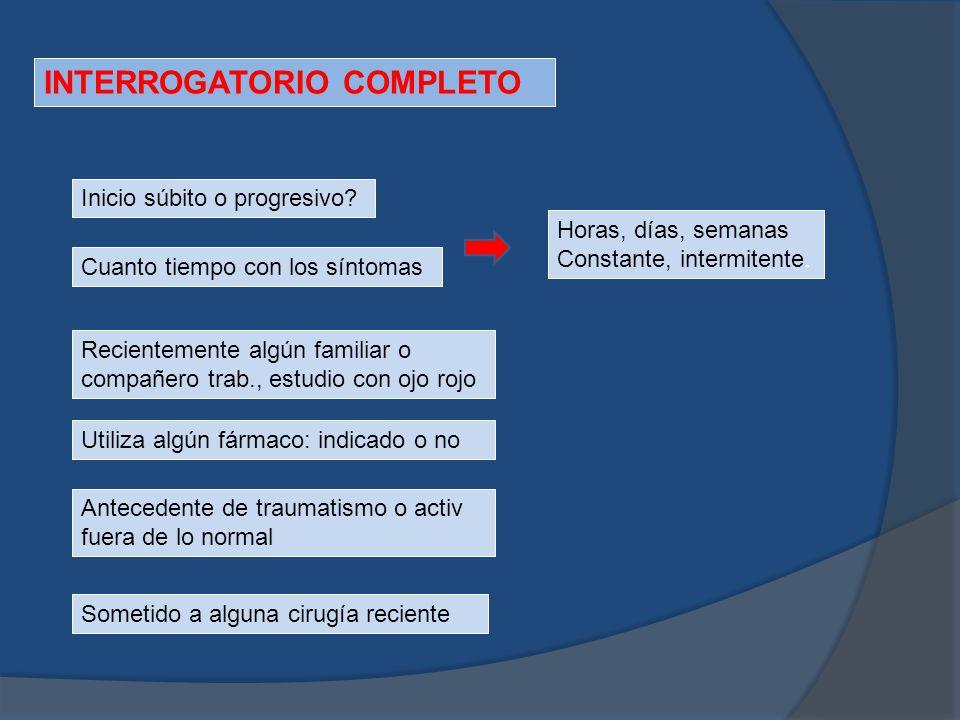 INTERROGATORIO COMPLETO