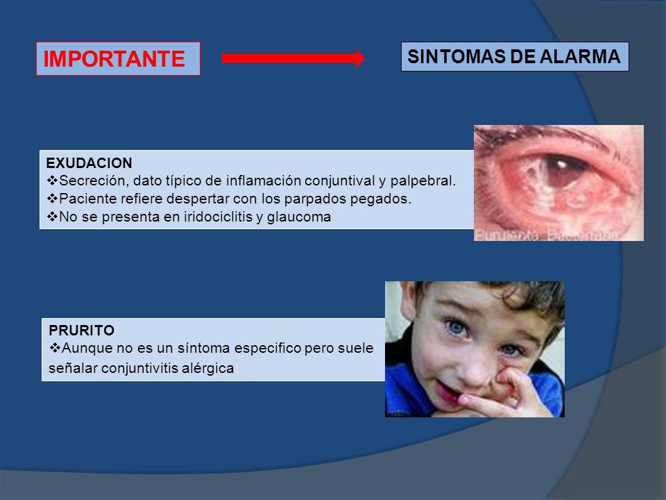 IMPORTANTE SINTOMAS DE ALARMA EXUDACION