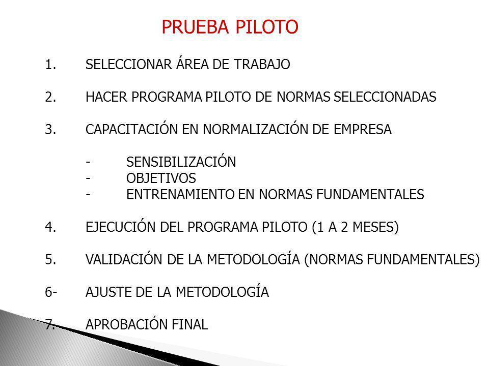 PRUEBA PILOTO 1. SELECCIONAR ÁREA DE TRABAJO