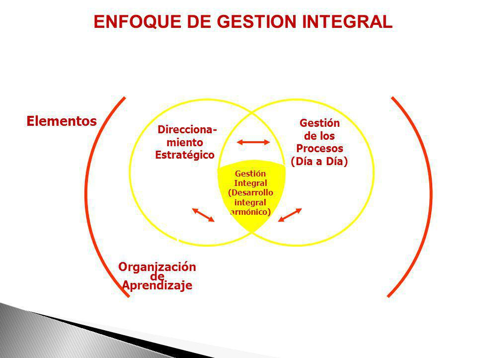 ENFOQUE DE GESTION INTEGRAL