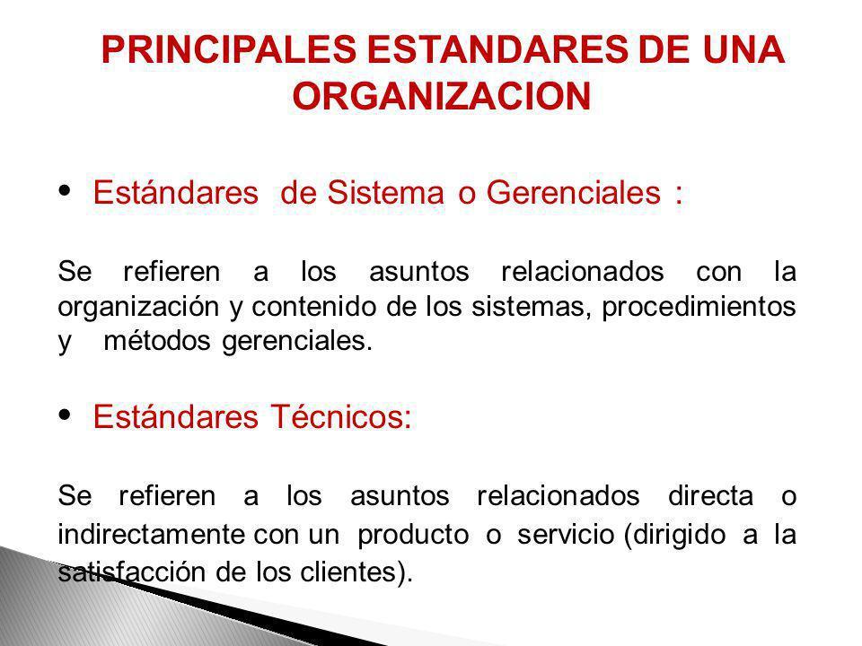 PRINCIPALES ESTANDARES DE UNA ORGANIZACION