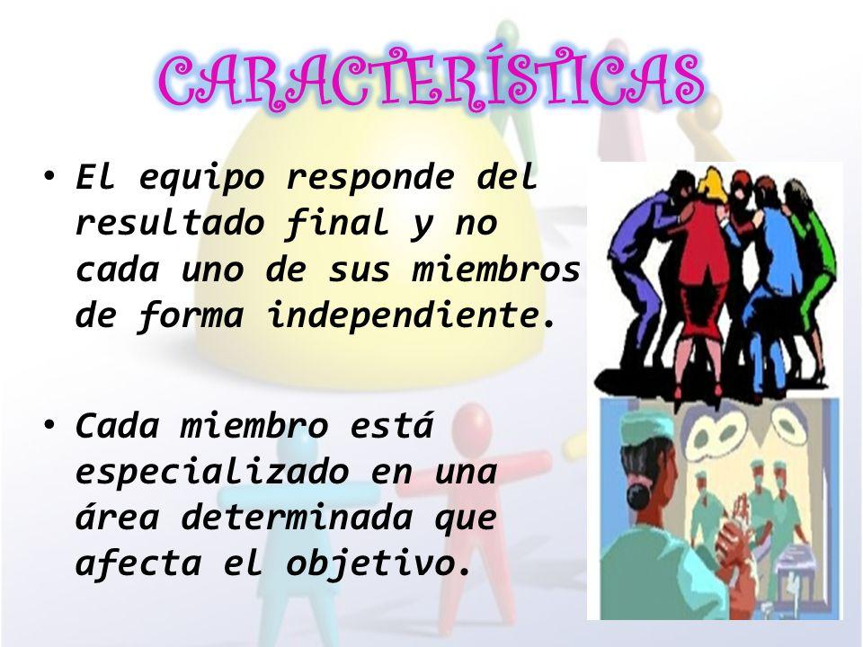 CARACTERÍSTICAS El equipo responde del resultado final y no cada uno de sus miembros de forma independiente.