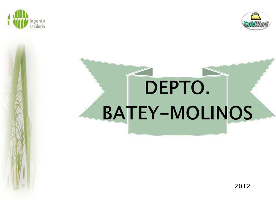 DEPTO. BATEY-MOLINOS 2012