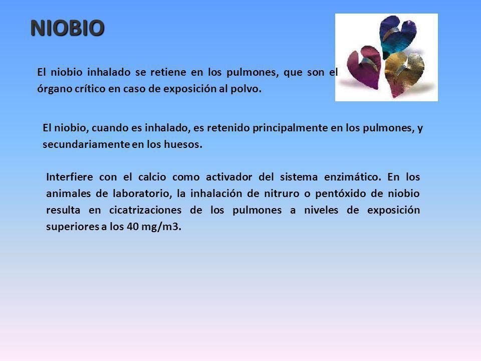 NIOBIO El niobio inhalado se retiene en los pulmones, que son el órgano crítico en caso de exposición al polvo.