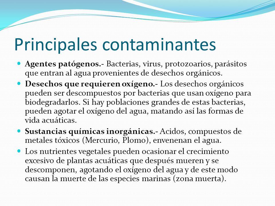 Principales contaminantes