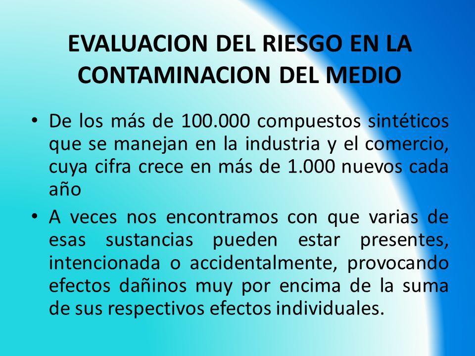 EVALUACION DEL RIESGO EN LA CONTAMINACION DEL MEDIO