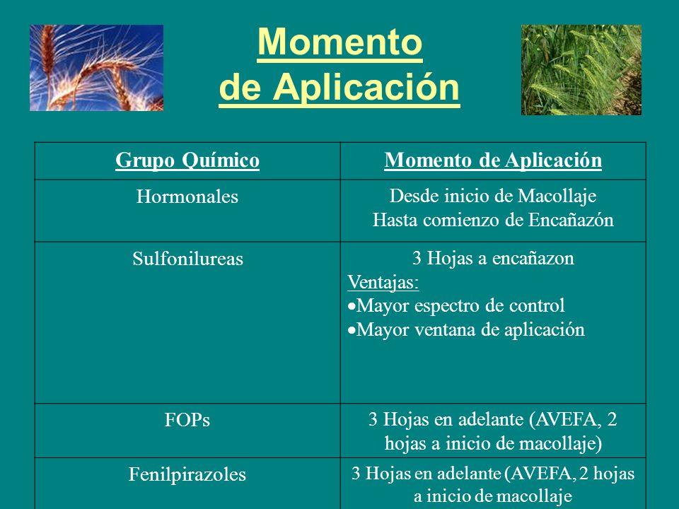 Momento de Aplicación Grupo Químico Momento de Aplicación Hormonales