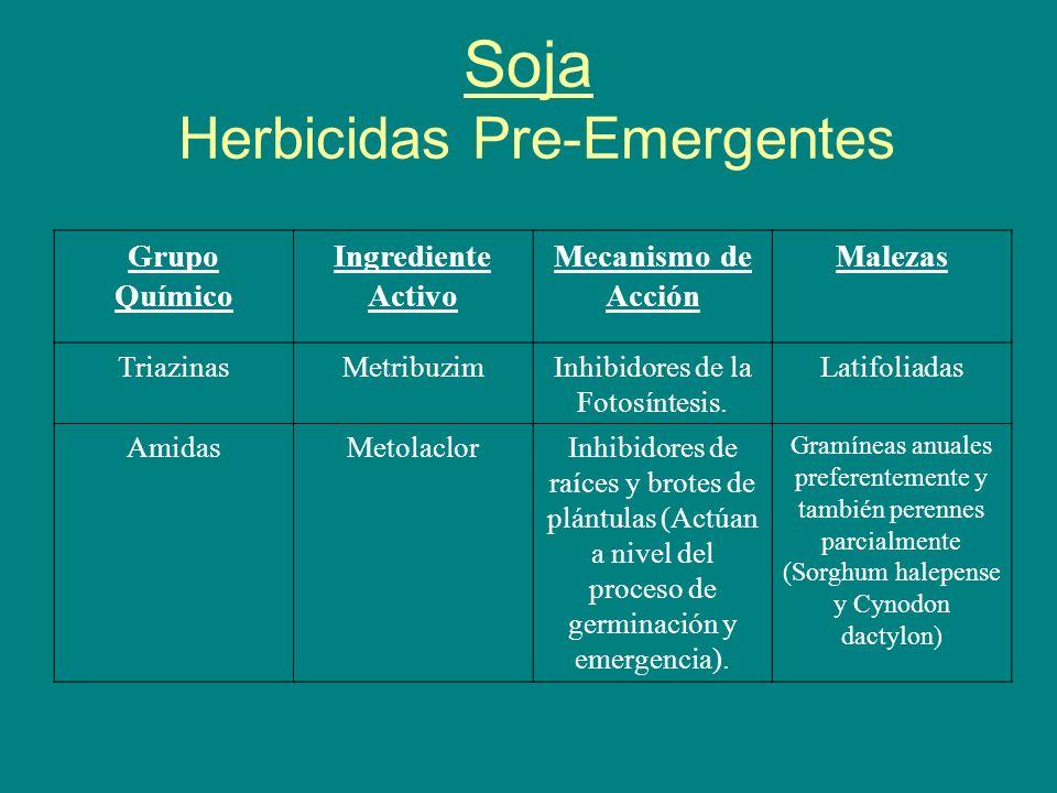 Soja Herbicidas Pre-Emergentes