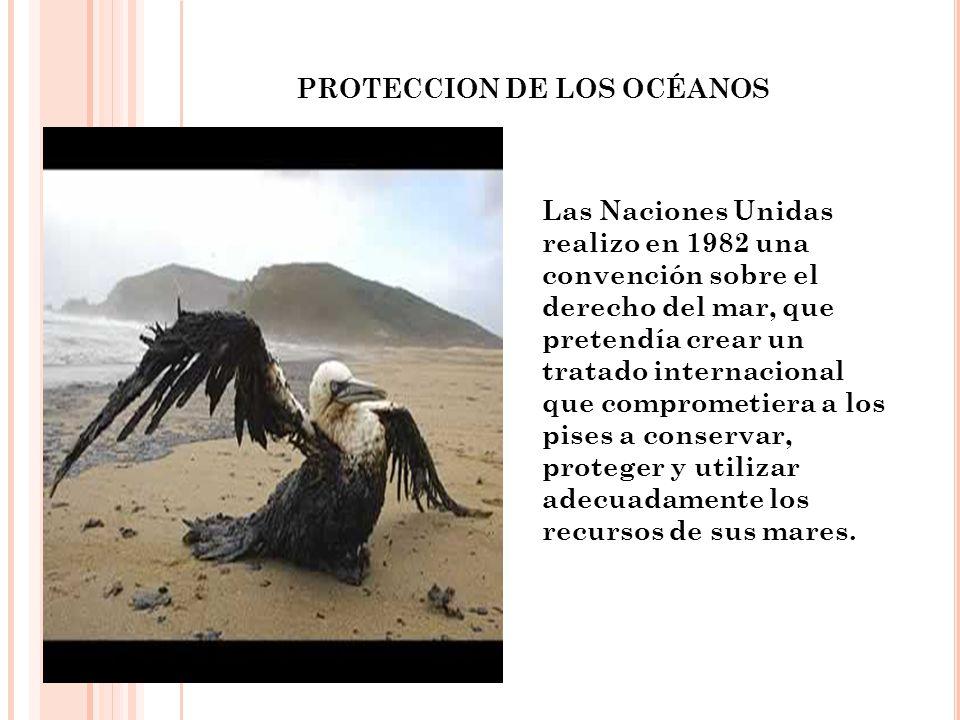 PROTECCION DE LOS OCÉANOS