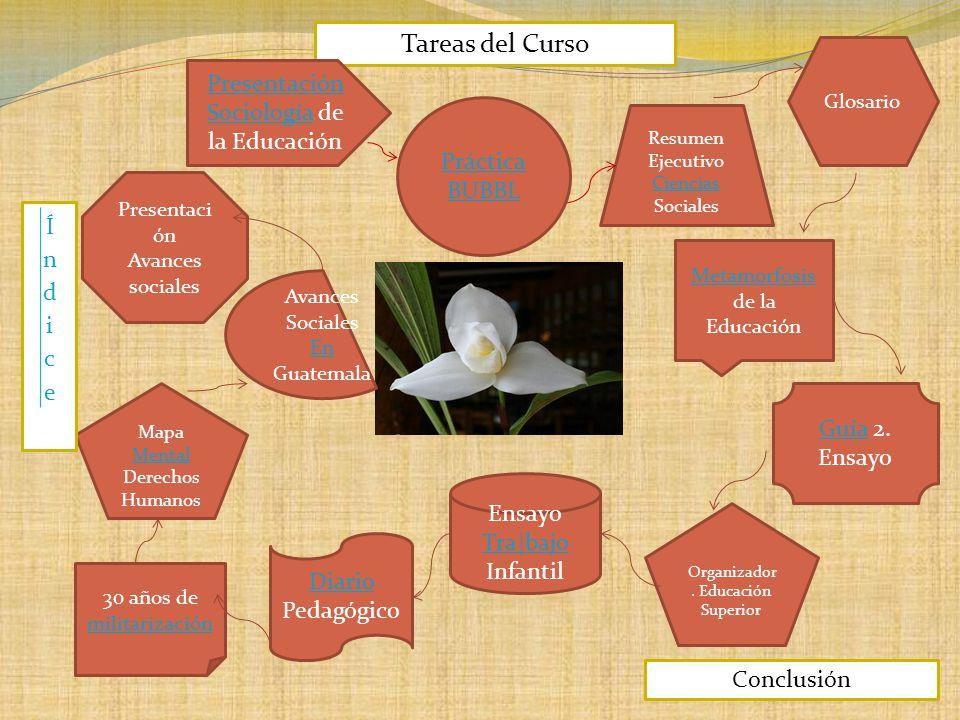 Tareas del Curso Presentación Sociología de la Educación Práctica