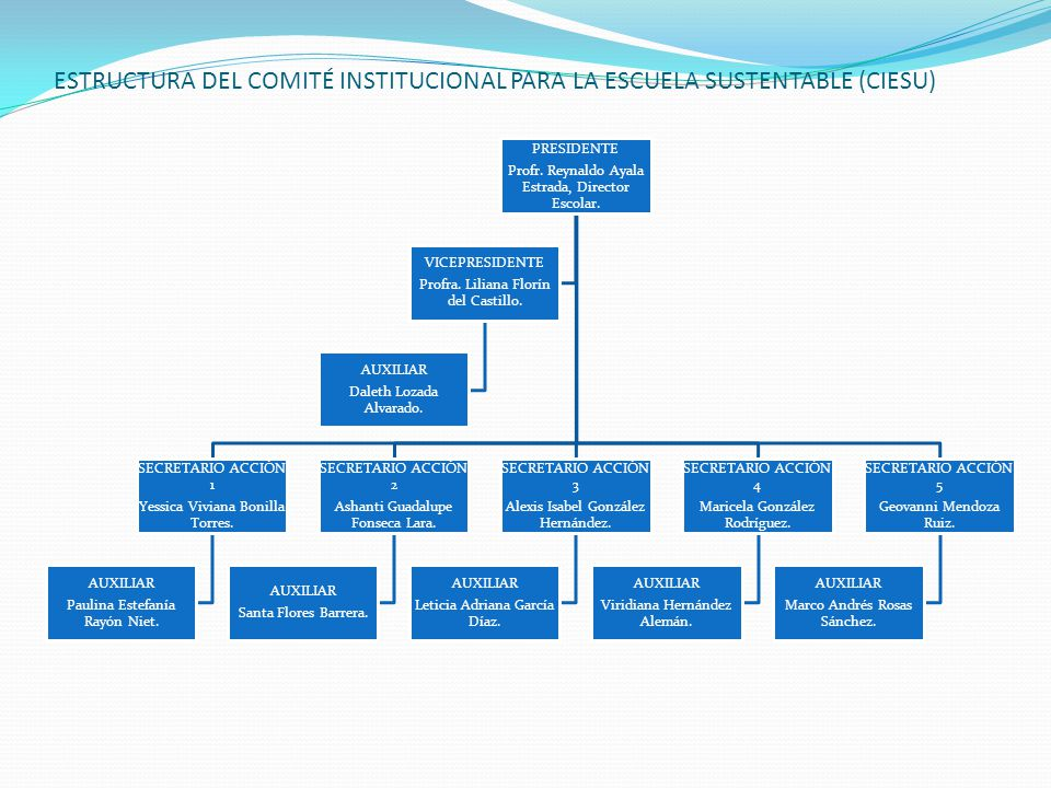 ESTRUCTURA DEL COMITÉ INSTITUCIONAL PARA LA ESCUELA SUSTENTABLE (CIESU)