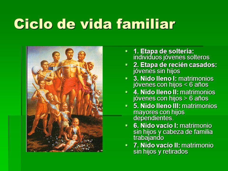 Ciclo de vida familiar 1. Etapa de soltería: individuos jóvenes solteros. 2. Etapa de recién casados: jóvenes sin hijos.