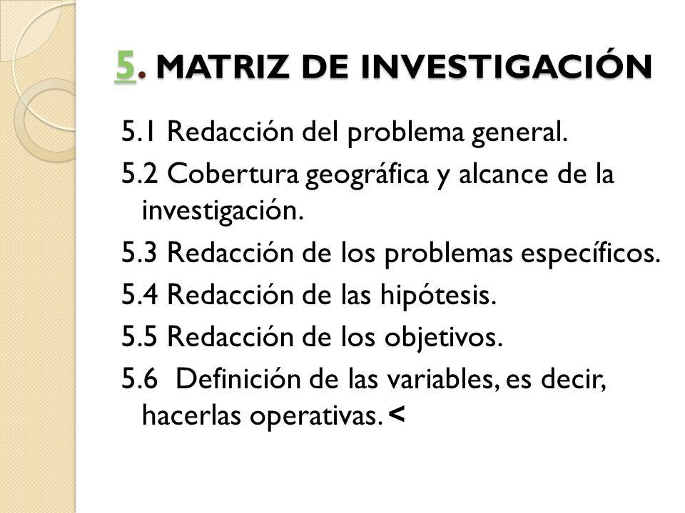 5. MATRIZ DE INVESTIGACIÓN