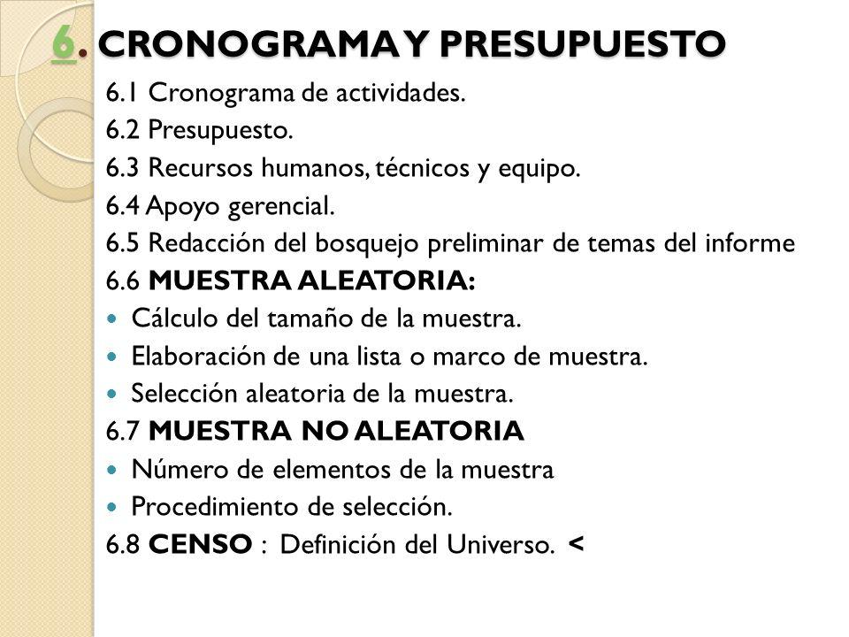 6. CRONOGRAMA Y PRESUPUESTO