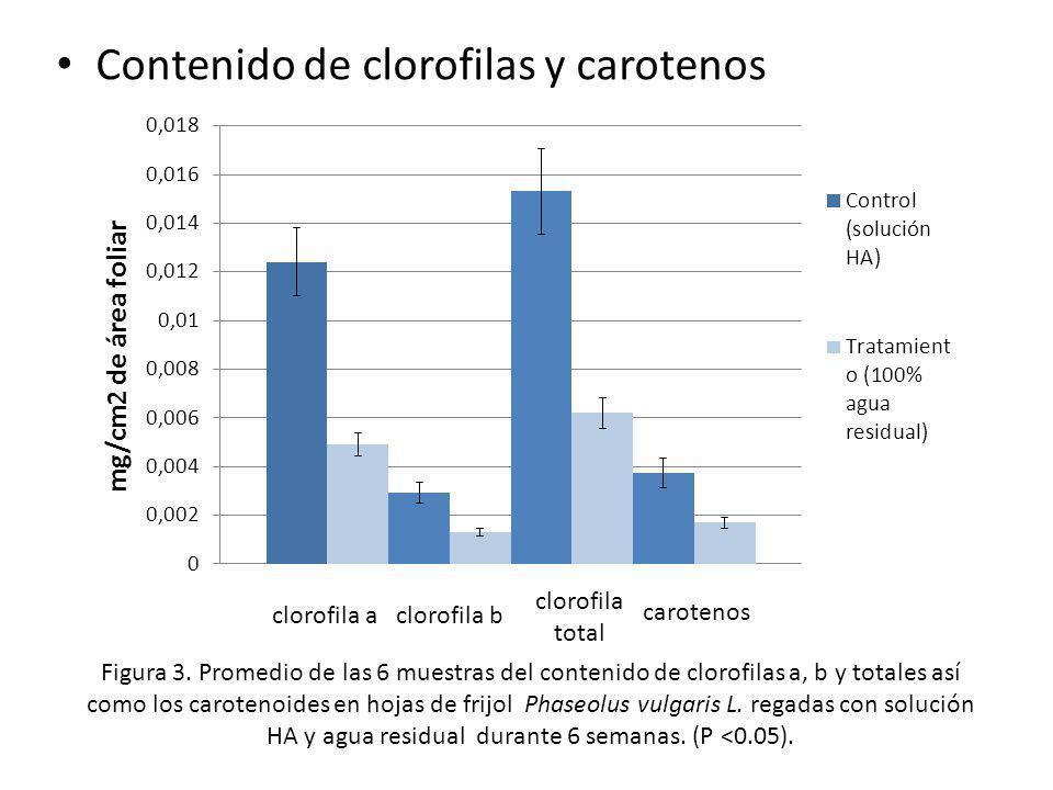 Contenido de clorofilas y carotenos