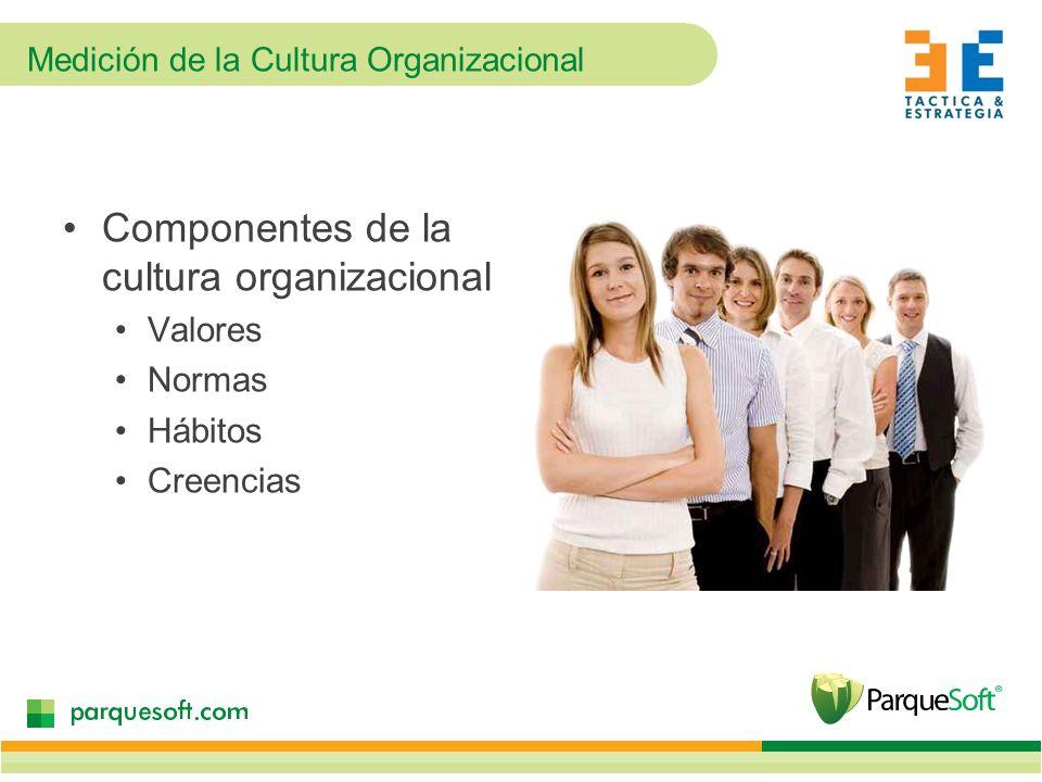 Medición de la Cultura Organizacional