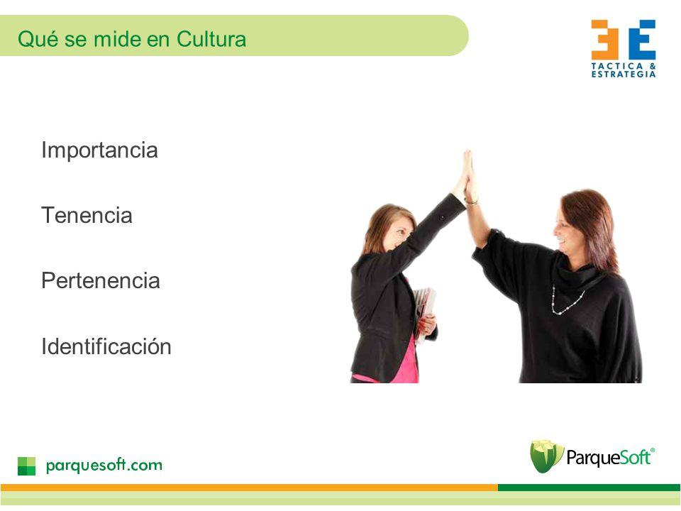 Importancia Tenencia Pertenencia Identificación Qué se mide en Cultura