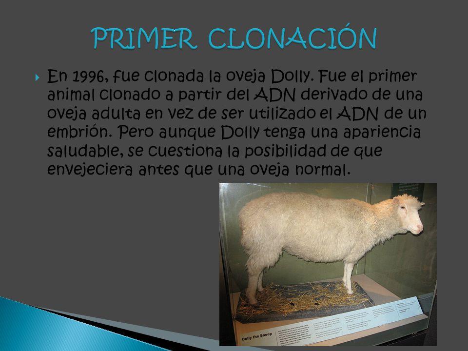 PRIMER CLONACIÓN