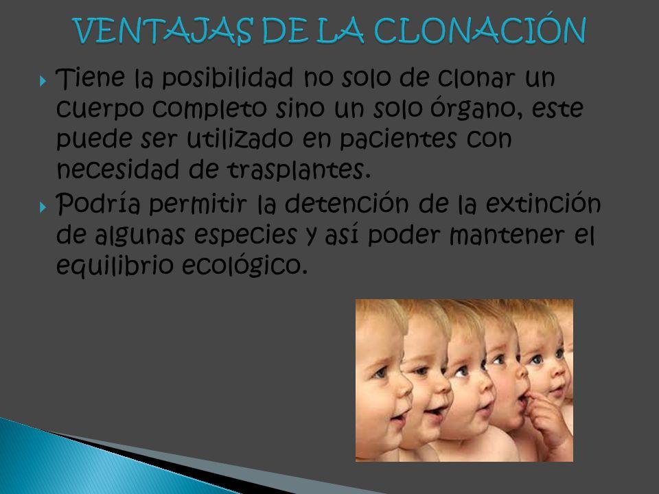 VENTAJAS DE LA CLONACIÓN