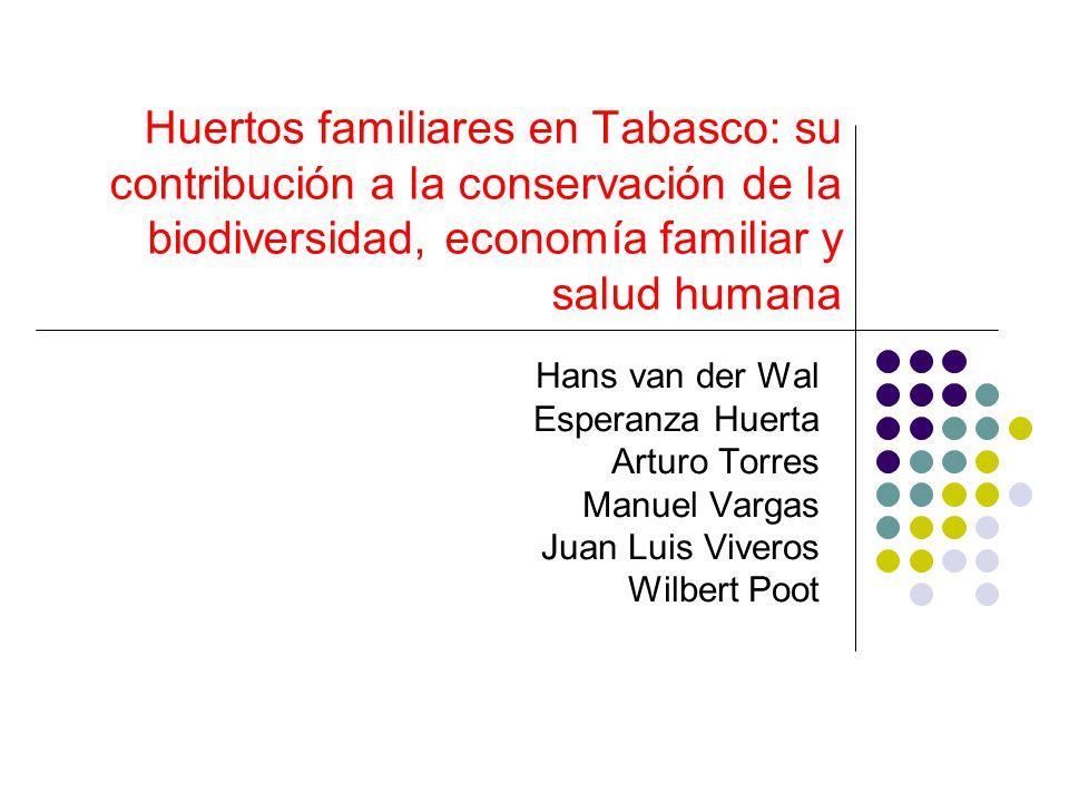 Huertos familiares en Tabasco: su contribución a la conservación de la biodiversidad, economía familiar y salud humana