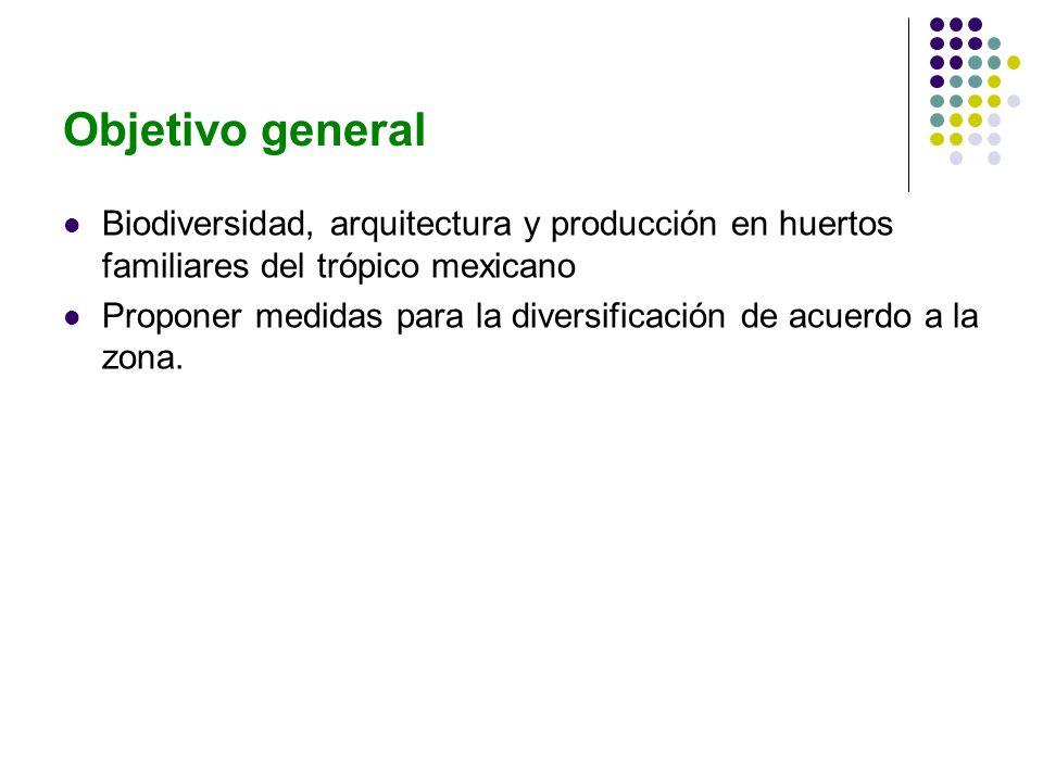 Objetivo general Biodiversidad, arquitectura y producción en huertos familiares del trópico mexicano.