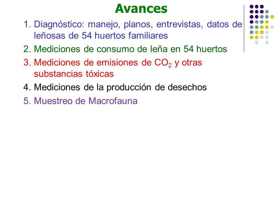 Avances Diagnóstico: manejo, planos, entrevistas, datos de leñosas de 54 huertos familiares. Mediciones de consumo de leña en 54 huertos.
