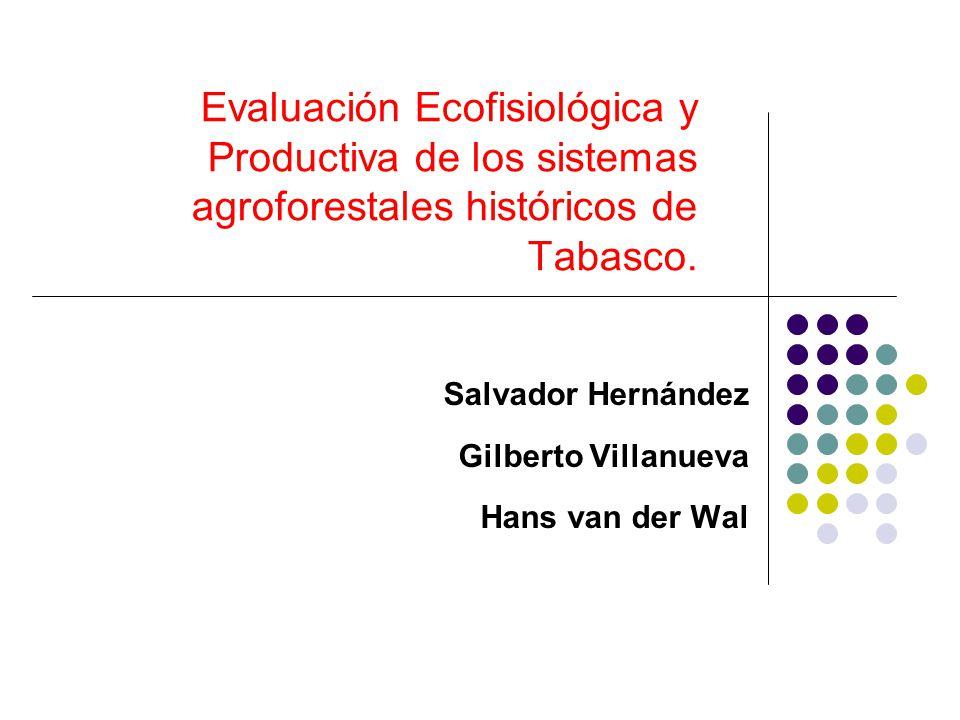 Salvador Hernández Gilberto Villanueva Hans van der Wal