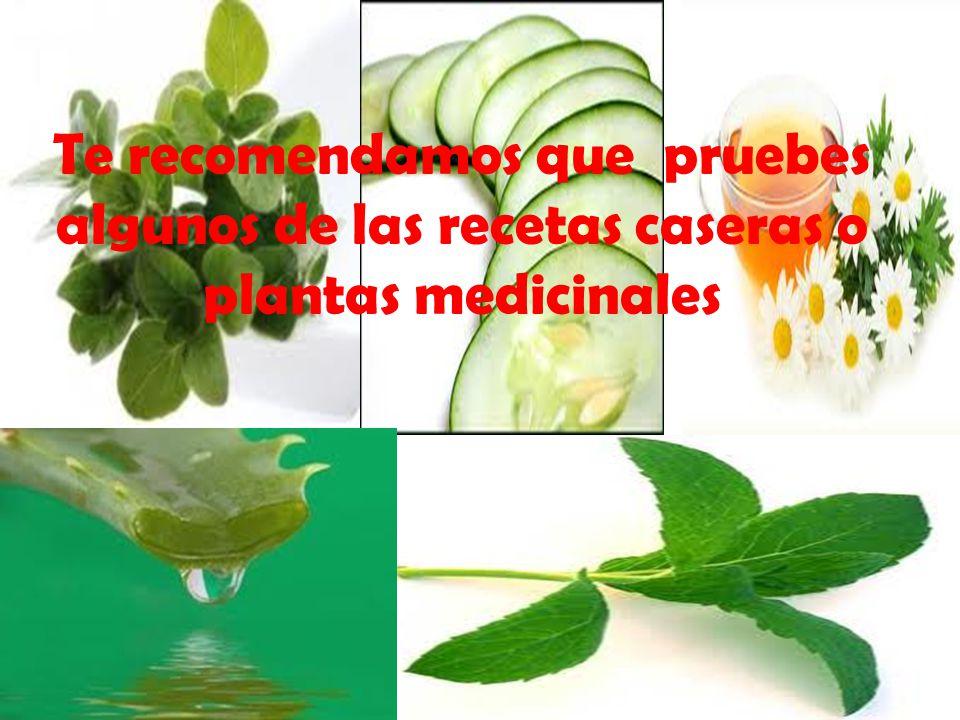 Te recomendamos que pruebes algunos de las recetas caseras o plantas medicinales