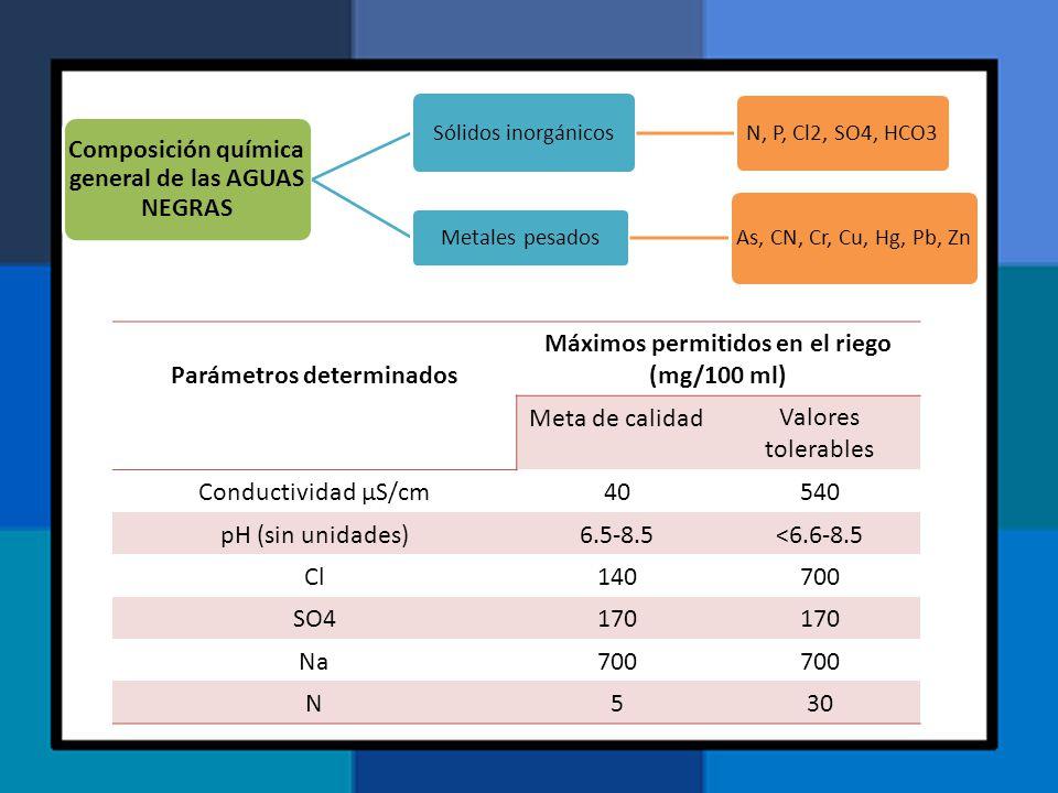 Composición química general de las AGUAS NEGRAS