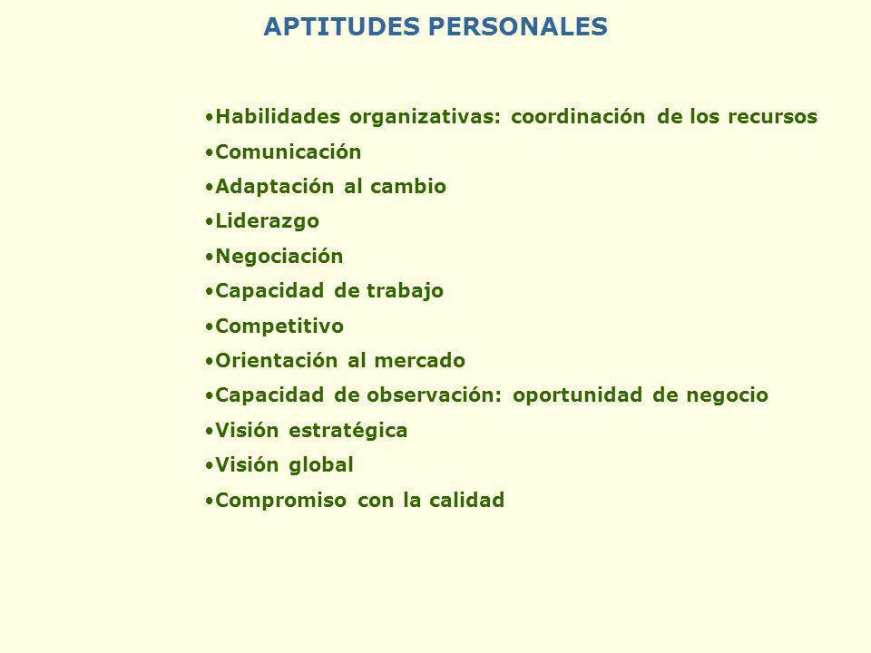 APTITUDES PERSONALES Habilidades organizativas: coordinación de los recursos. Comunicación. Adaptación al cambio.