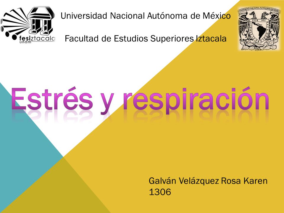 Estrés y respiración Universidad Nacional Autónoma de México