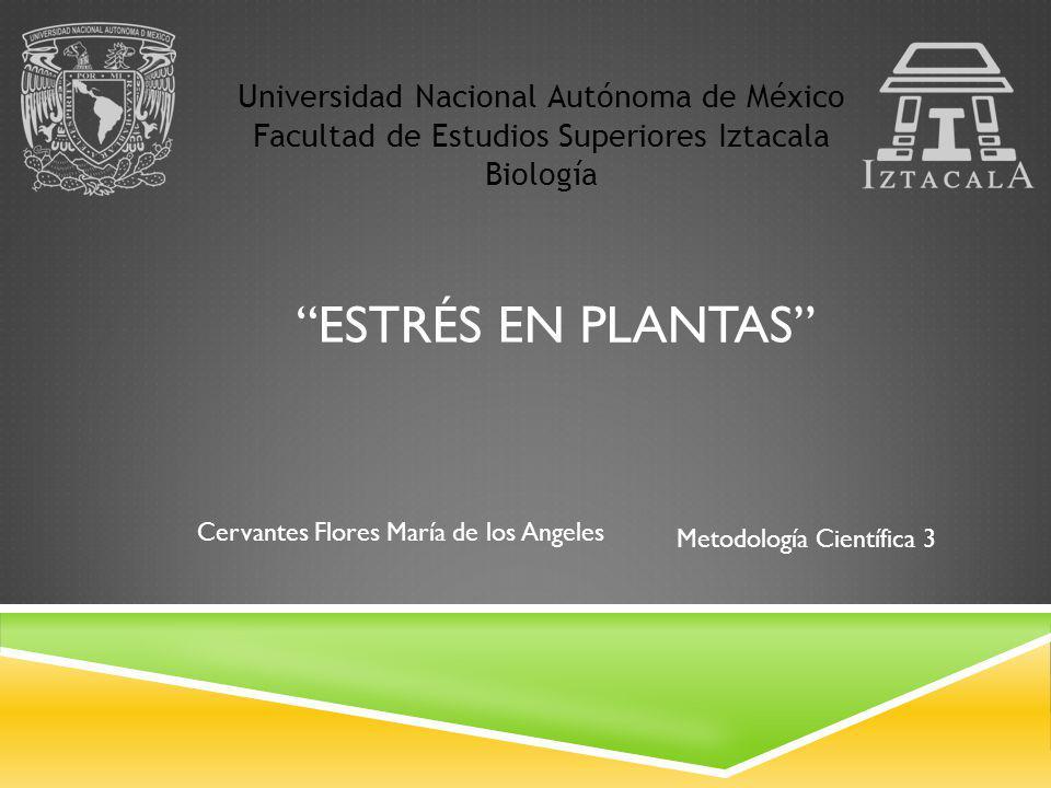 ESTRÉS EN PLANTAS Universidad Nacional Autónoma de México