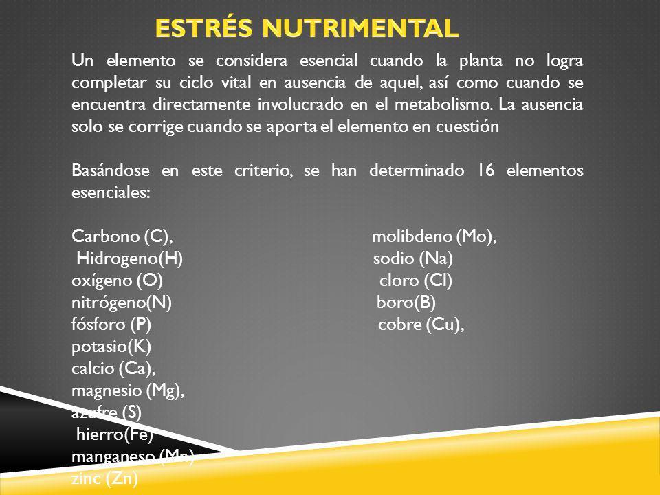 ESTRÉS NUTRIMENTAL