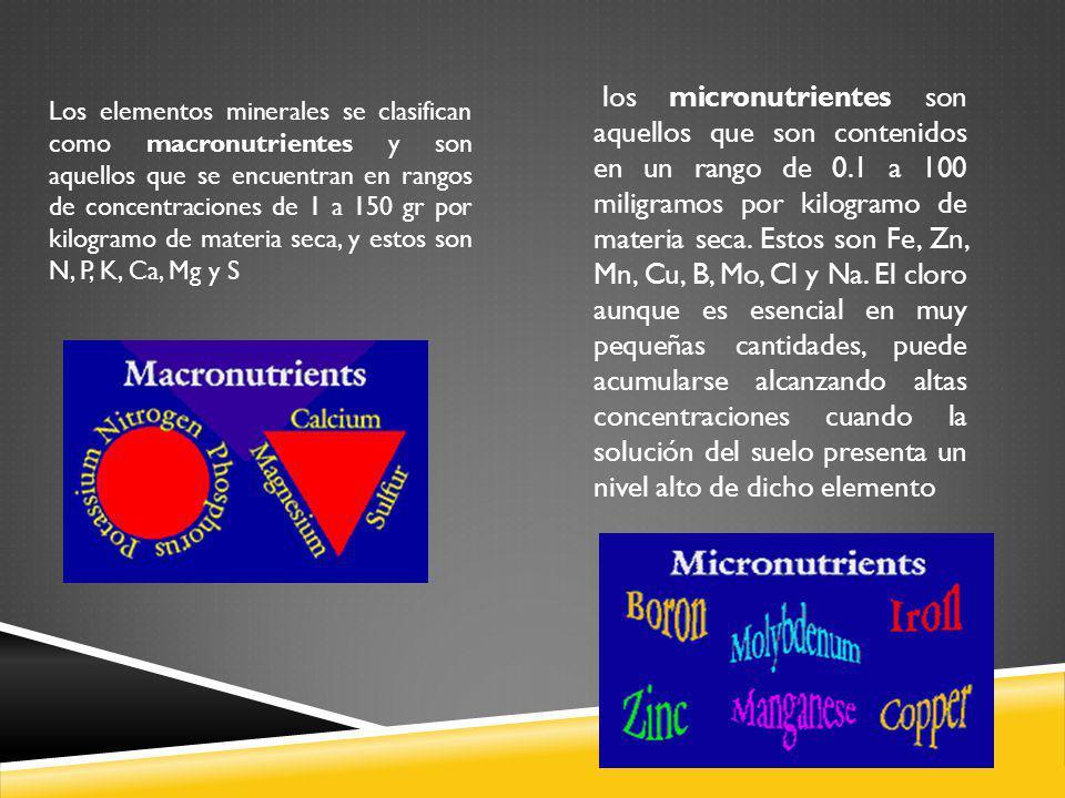 los micronutrientes son aquellos que son contenidos en un rango de 0