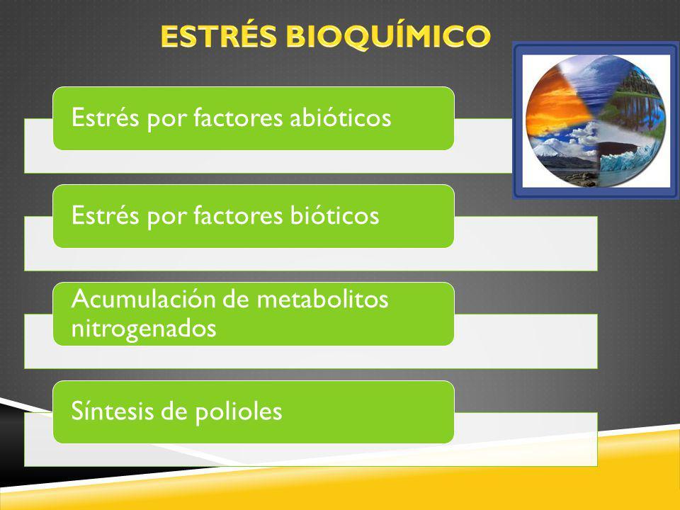 ESTRÉS BIOQUÍMICO Estrés por factores abióticos