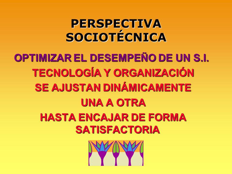 PERSPECTIVA SOCIOTÉCNICA