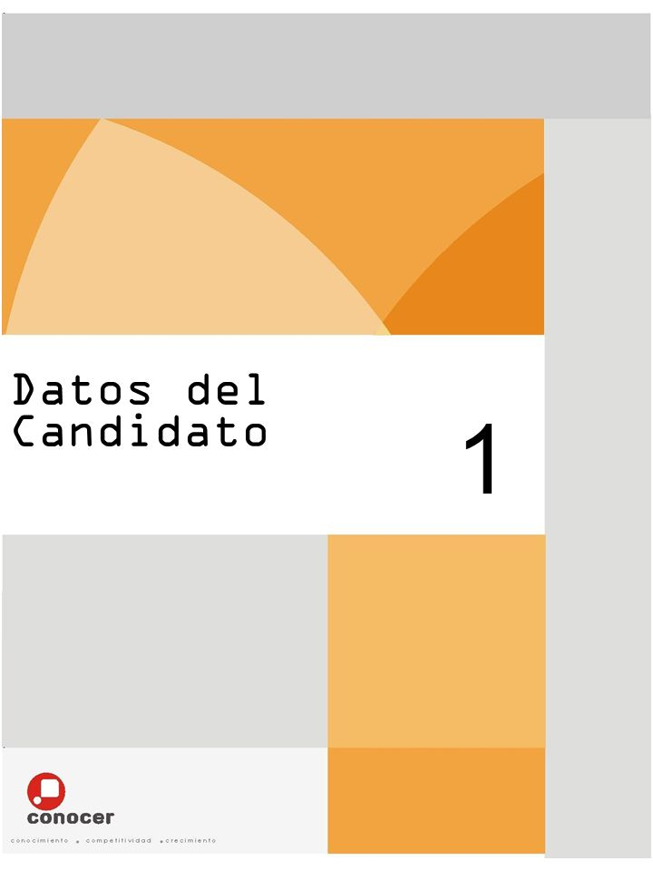 Datos del Candidato 1