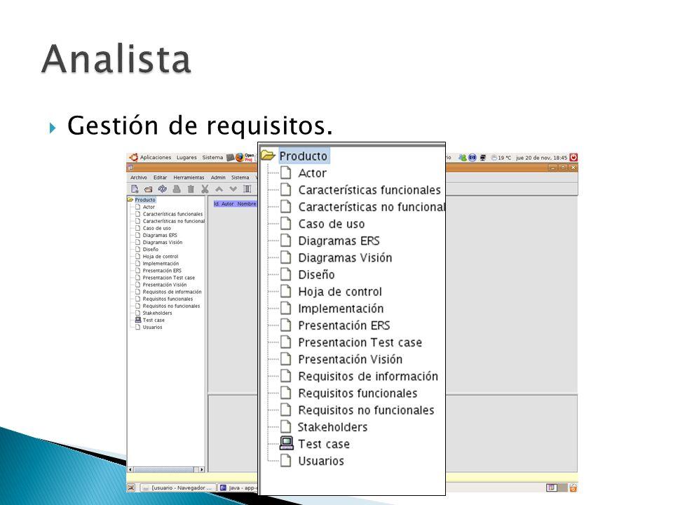 Analista Gestión de requisitos.