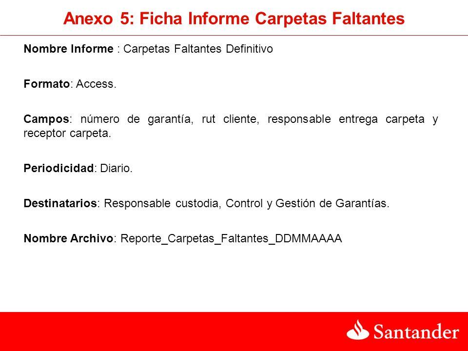 Anexo 5: Ficha Informe Carpetas Faltantes