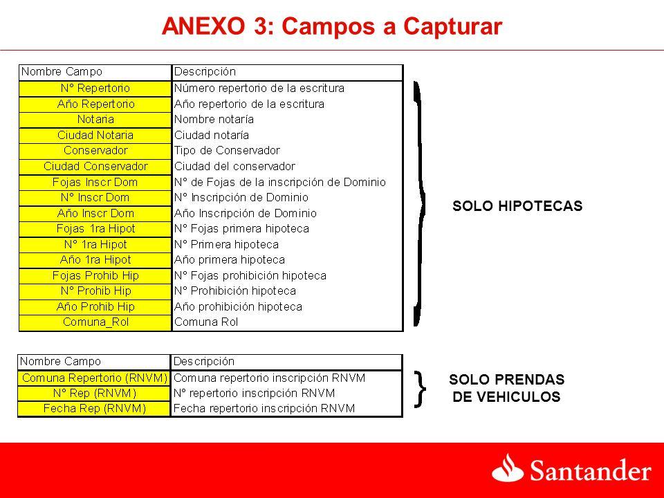 ANEXO 3: Campos a Capturar SOLO PRENDAS DE VEHICULOS