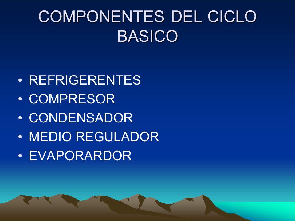 COMPONENTES DEL CICLO BASICO