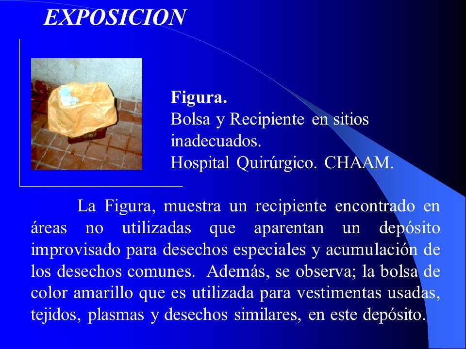 EXPOSICION Figura. Bolsa y Recipiente en sitios inadecuados.