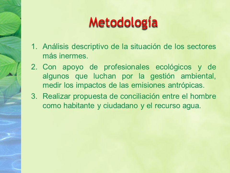 Metodología Análisis descriptivo de la situación de los sectores más inermes.