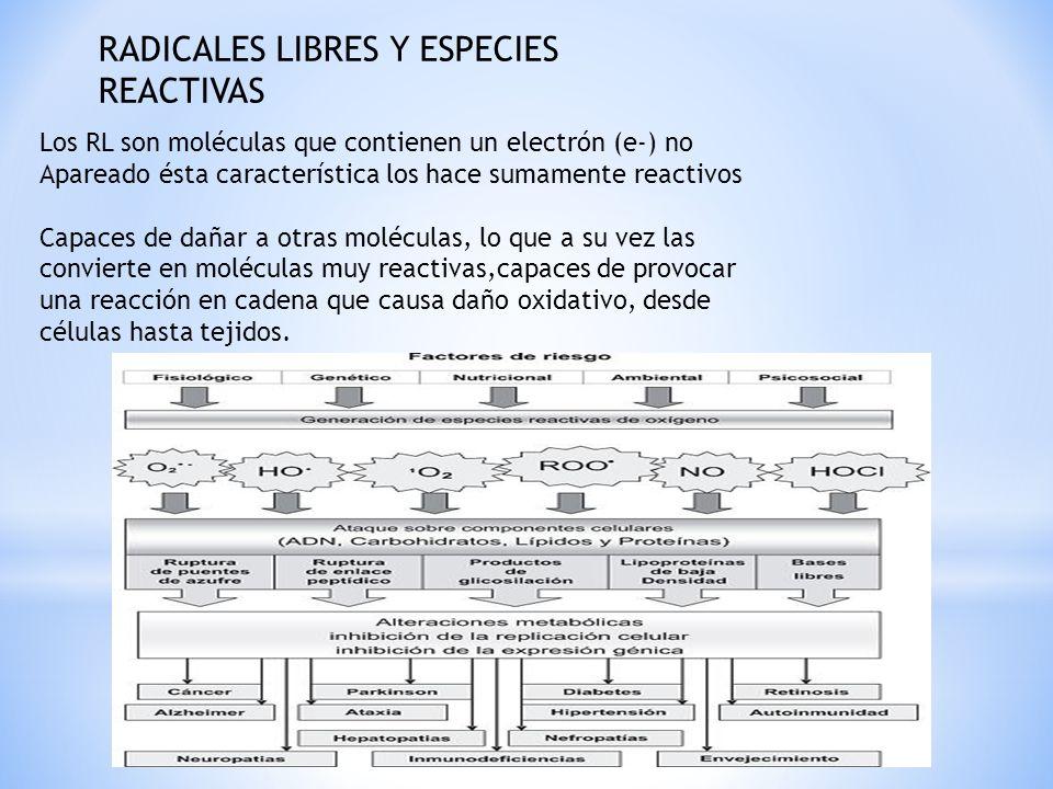 RADICALES LIBRES Y ESPECIES REACTIVAS