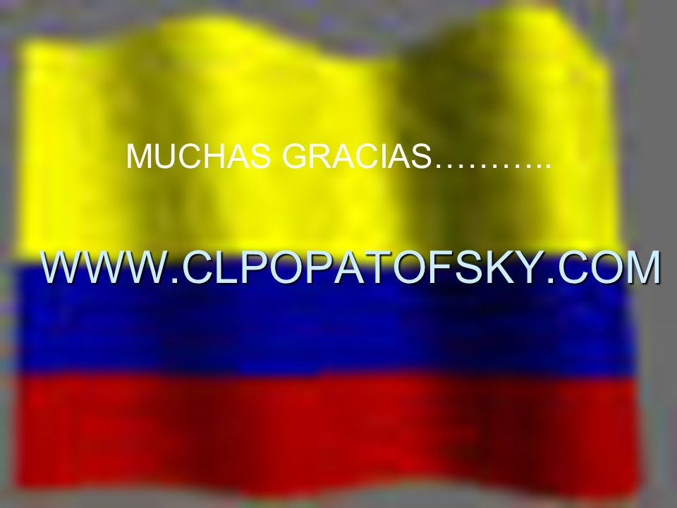 WWW.CLPOPATOFSKY.COM MUCHAS GRACIAS………..