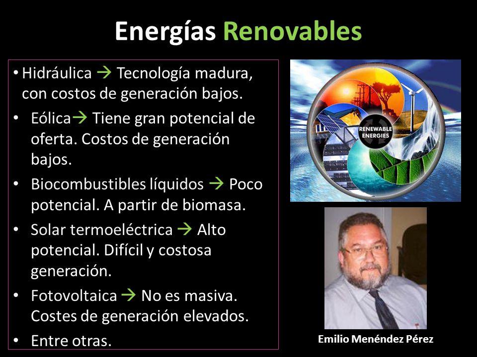 Energías Renovables Hidráulica  Tecnología madura, con costos de generación bajos.